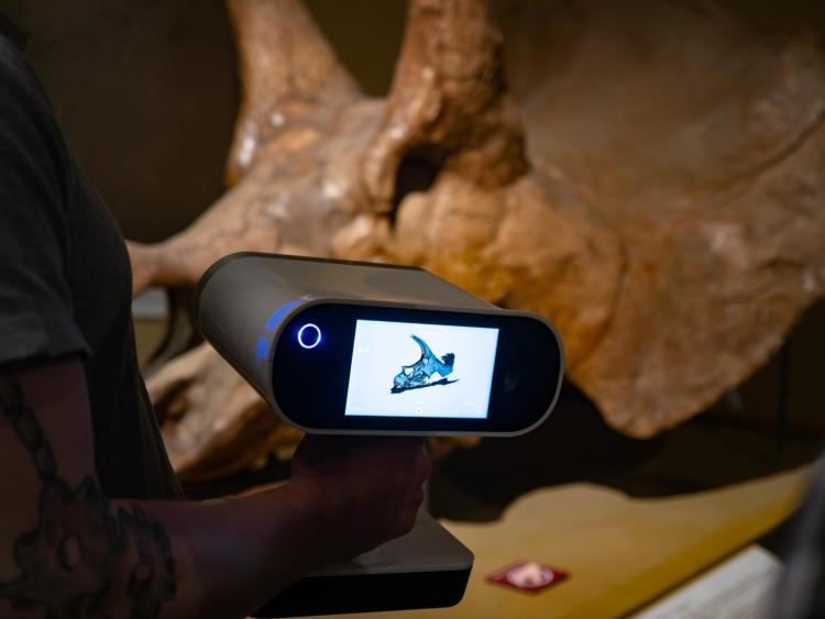The 3D scan of the. Triceratops skull as seen on the screen of the scanning device.