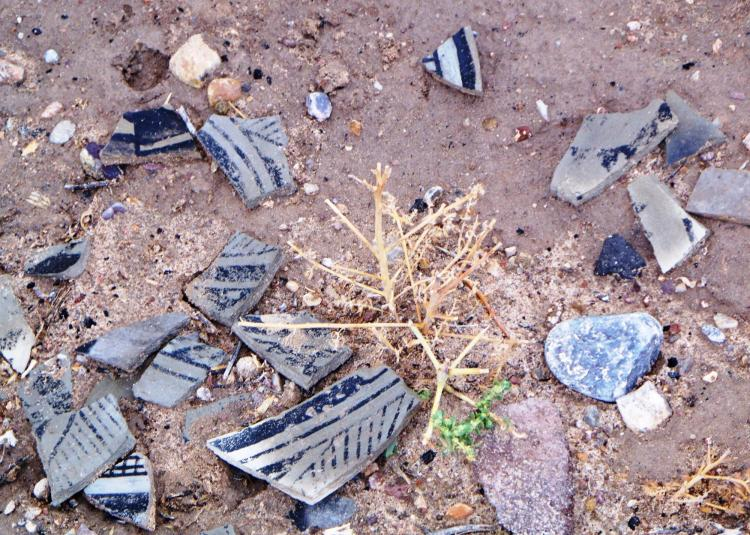 Fragments of centuries-old pottery in the dirt.