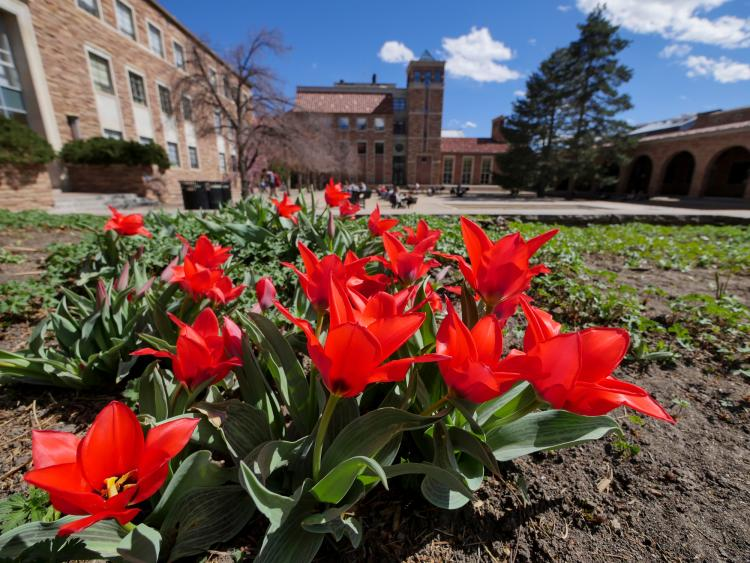 Colorado climate webinar to discuss decarbonization, energy, climate change - CU Boulder Today