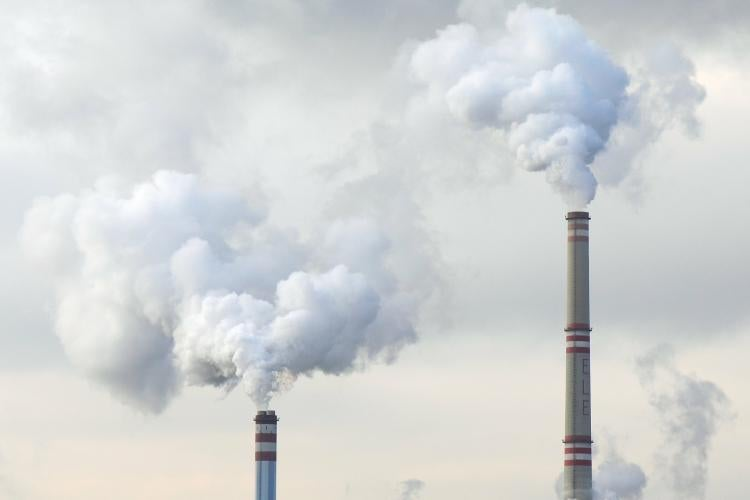 Natural gas and wind energy killed coal, not 'war on coal'