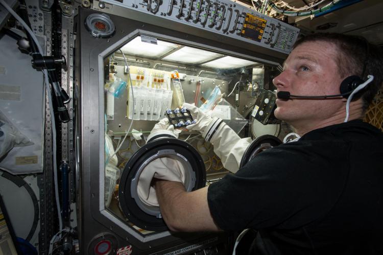 BioServe Space Technologies: CU Boulder's presence on the ...