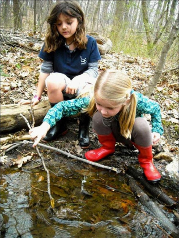 Children explore in a creek.