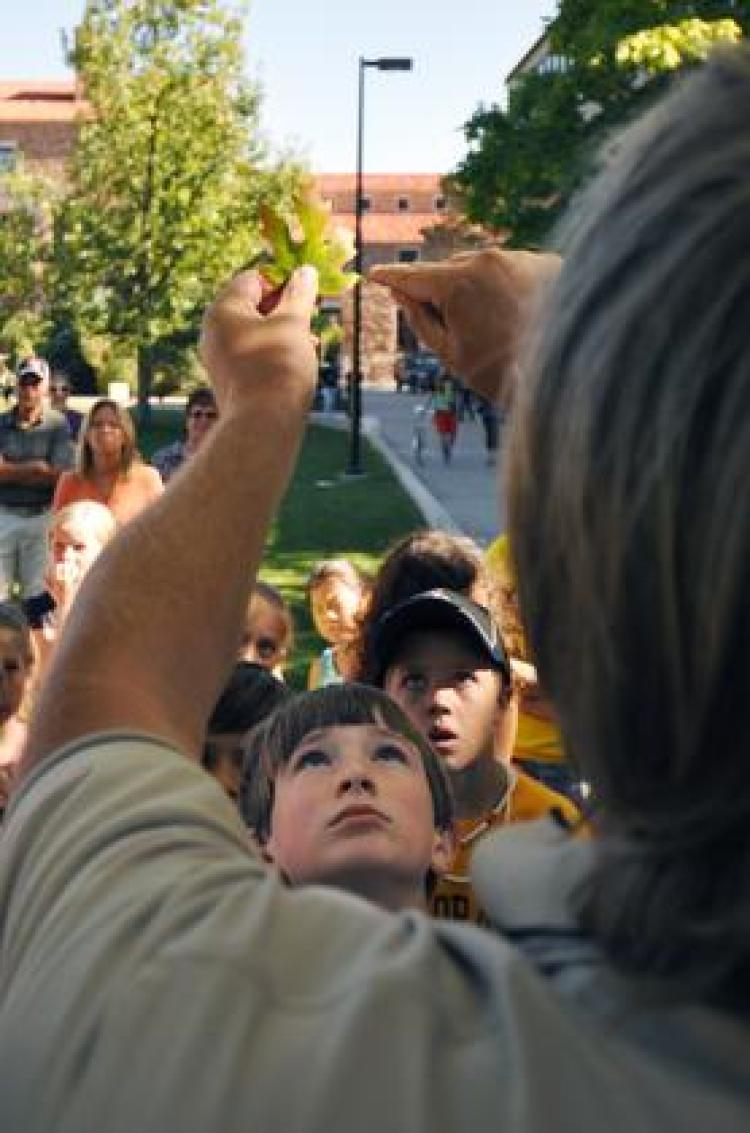 Fourth-graders participate in a University of Colorado Boulder tree walk.