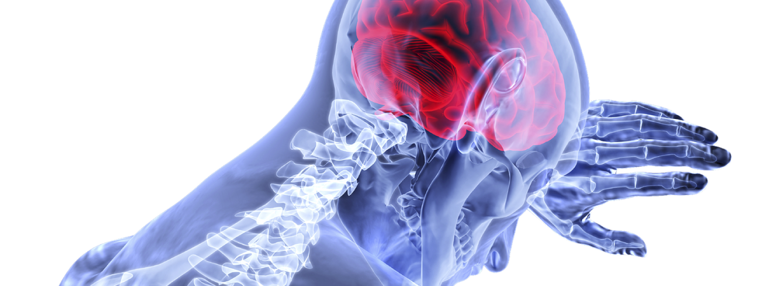 Graphic showing brain and skeleton