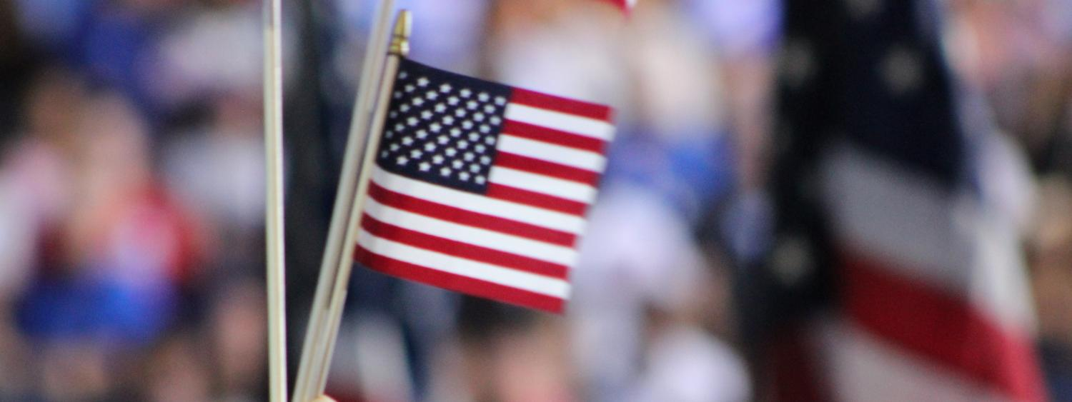 person waving american flags