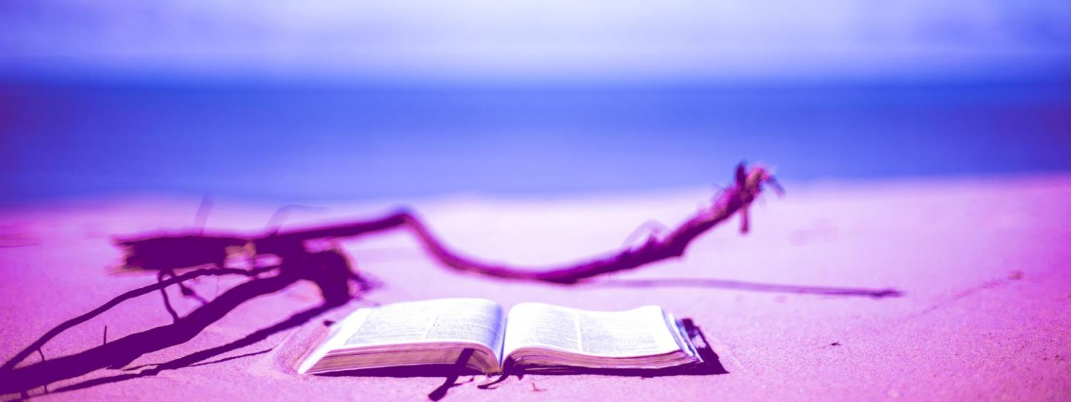 Image of a book on a beach