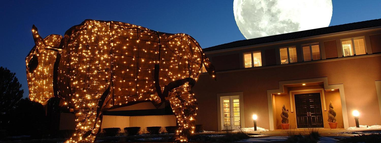 Buffalo light sculpture