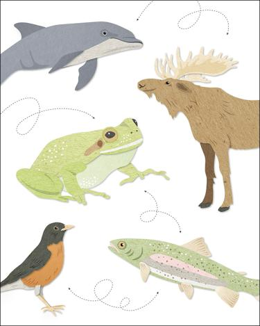 Illustration with animals