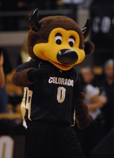 Chip the mascot at a basketball game