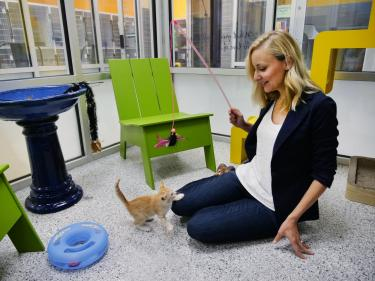 Lindsay Scott plays with a kitten at Boulder's Humane Society.
