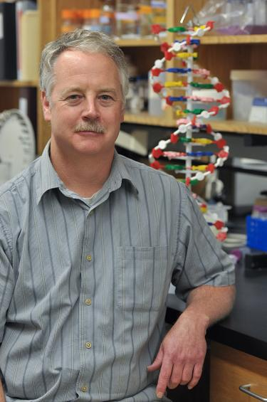 CU Boulder nicotine researcher Jerry Stitzel in his lab