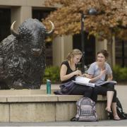 Students sit and chat near buffalo statue on campus