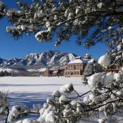 Winter snow on campus, looking through evergreens toward the Flatirons