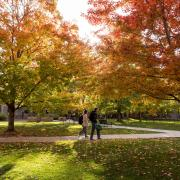 Students walk to class on the CU Boulder campus
