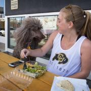 Clare Bradley enjoys a lunch outside the Food Court on The Hill with her standard poodle Delilah