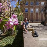 spring blooms on campus