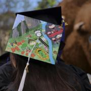 Painted graduation cap