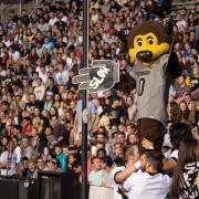 Chip helps the crowd cheer on the Colorado Buffaloes.