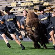 Scenes from the 2019 CU Kickoff at Folsom Field. (Photo by Glenn Asakawa/University of Colorado)
