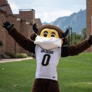 Chip the mascot wearing his mask on campus