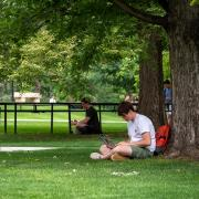 student sitting against tree studying