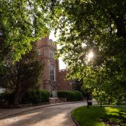 Sun filters through the trees in early morning by Macky Auditorium