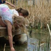 Children explore pond.