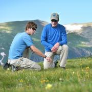 alpine research