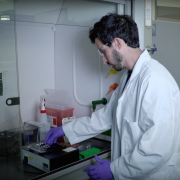 Researcher works in the lab