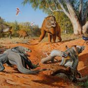 an illustration showing various Australian megafauna