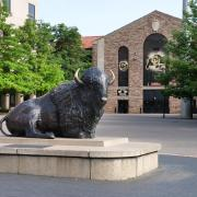 Buffalo statue outside Balch Fieldhouse