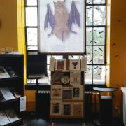 Bats: Language & Cultures exhibit