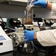 a researcher pours a liquid solution into a beaker