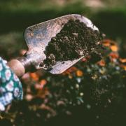 A garden shovel with dirt on it.