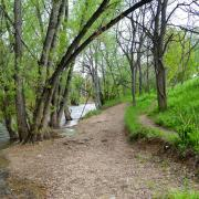 Image of Boulder Creek and dirt pathway