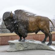 Snow falls on buffalo statue on CASE rooftop