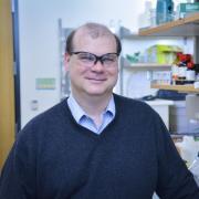 Distinguished Professor Christopher Bowman