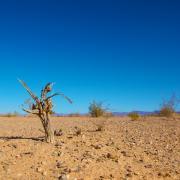 Dry, desert landscape