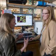 Kristi Anseth, right, and team member discuss research