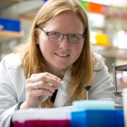 World-renowed researcher Kristi Anseth works in the lab at CU Boulder's Jennie Smoly Caruthers Biotechnology Building.