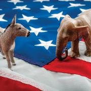 Image of a donkey, elephant and American flag