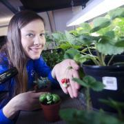 student space gardening