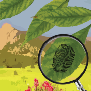 Magnifying glass uncovers fingerprint, Flatirons in the background