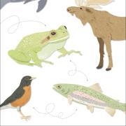 Illustration with animals