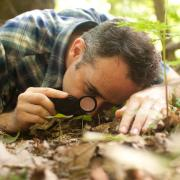 David George Haskell examines a plant under a magnifying glass