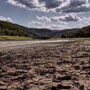 Image of a riverbed during drought