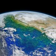 California current