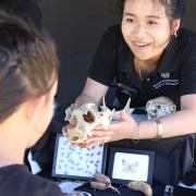 CU Museum of Natural History community educator shows child a skull