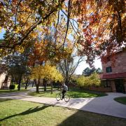 Person riding a bike on campus