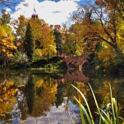 Varsity Lake on campus